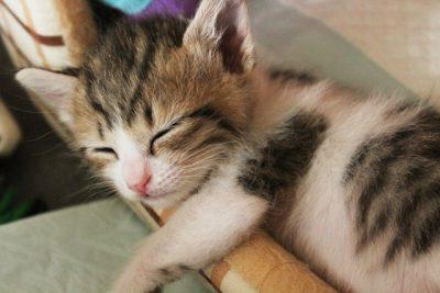 気持ちよく寝るのイメージ