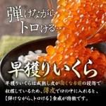 北海道産 早獲り 本いくらが全品半額セールで激安&各種エントリーでポイント高還元!