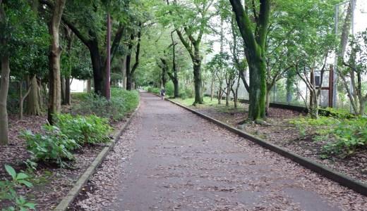 淵野辺運動公園 密だったジョギングコースは今どうなっているの?