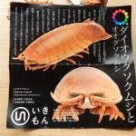 そのリアルすぎる造形に驚愕!!ダイオウグソクムシのガチャガチャに1600円も使ってしまった話