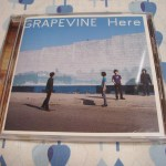 CD GRAPEVINE「Here」