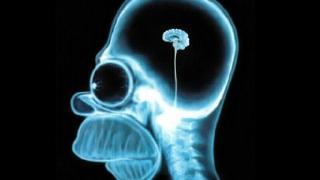 insan-beyni-kac-gram