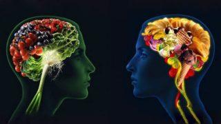 beyin-besin