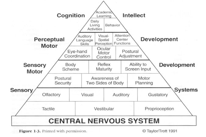 Pyramid-of-Learning