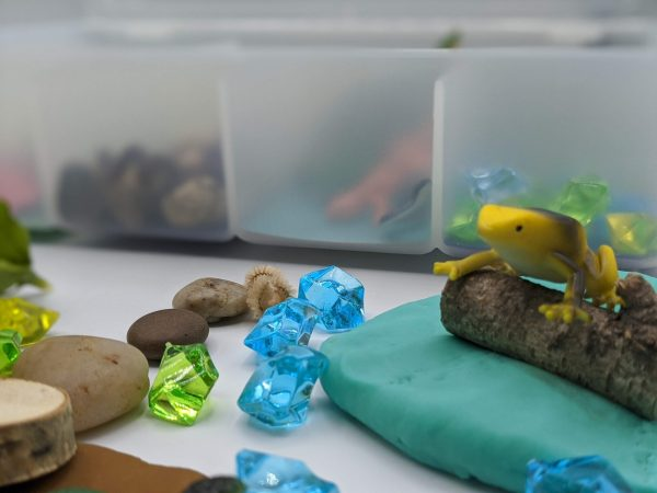 Reptiles Kit - Frogs and Rocks