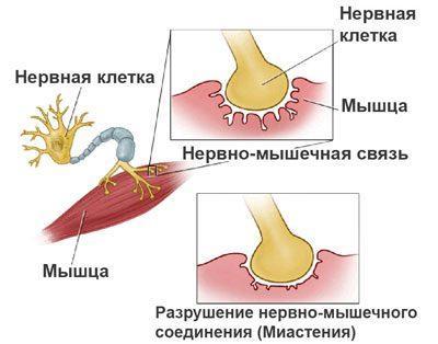 Лидокаин в стоматологии гель спрей ампулы карпулы