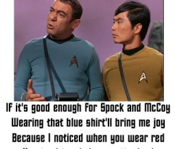 Star Trek Blue Shirt