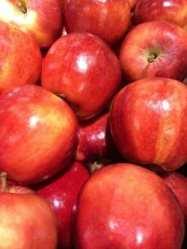 fruit_for_fibre