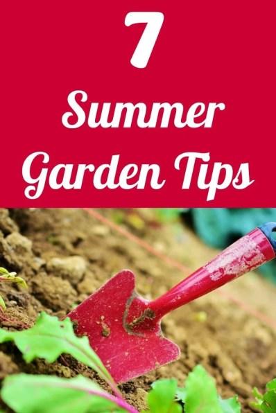 7 Summer Garden Tips