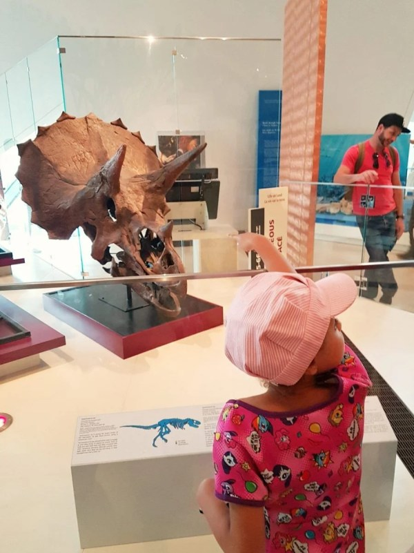 Ottawa Mommy Delight in Different Adventures at the Royal Ontario Museum #Review