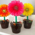 Flower Dirt Sundae Cups Recipe