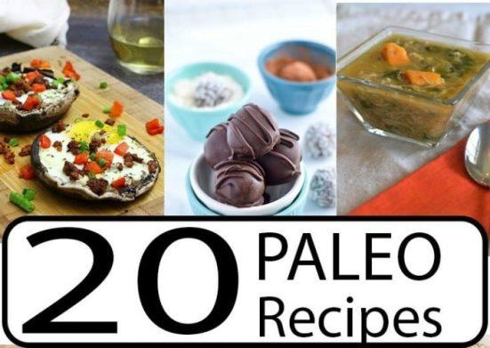 Over 20 Paleo Recipes