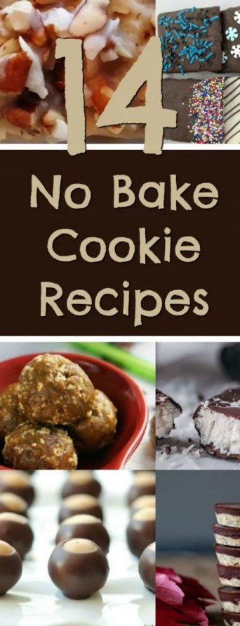 14 No Bake Cookie Recipes