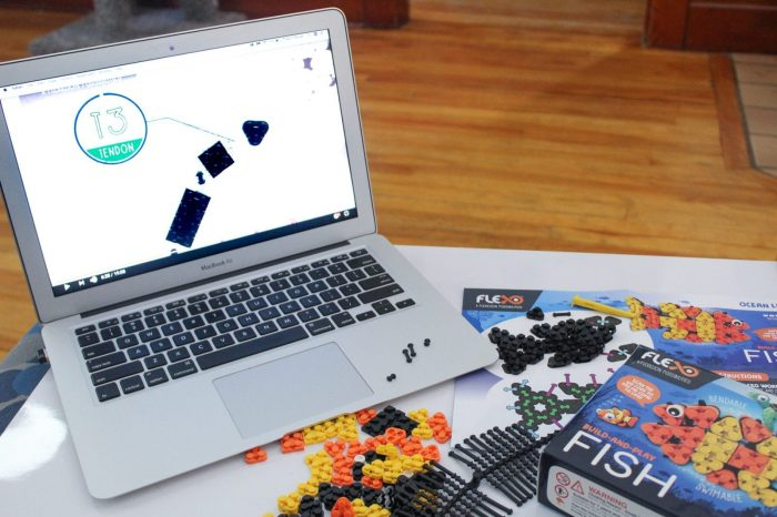 Build and Bend into Fun with Flexo