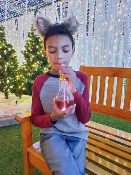 Make the Holidays Bright at Glow Ottawa