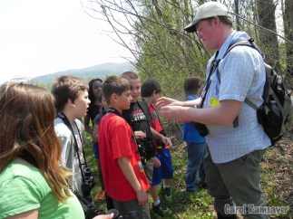 Showing an Indigo Bunting feather