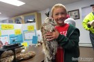Holding a Barred Owl study skin