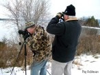 Scanning for waterfowl.