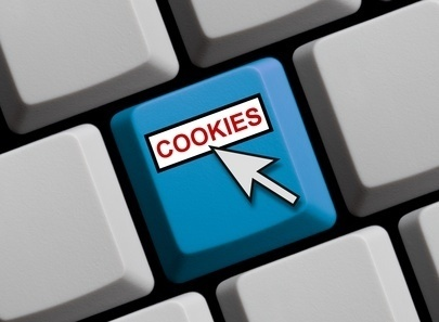 Cookies e Privacy Policy di Ottica Risi