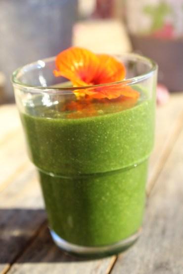 Green Smoothie im Winter mit Green Powder_ Chlorella