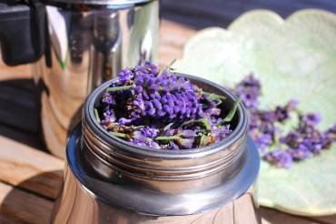 Lavendelhydrolat selbermachen, als Gesichtswasser, zur Weiterverarbeitung zu Naturkosmetik