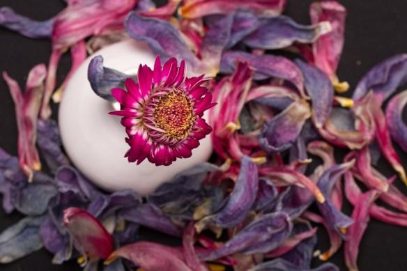 20-Blomsterarrangemang