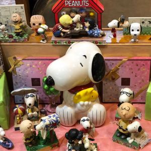 Peanut's & Snoopy