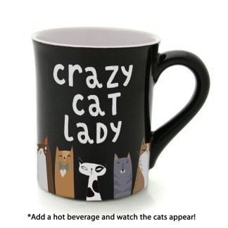 Crazy Cat Heat Activated Mug by Our Name Is Mud - 6005726