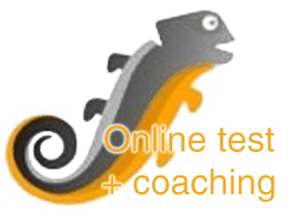 SCIL online test + coaching