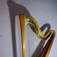 9716 Square Harp Shadow