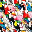 Minky Way Fabrics Birds