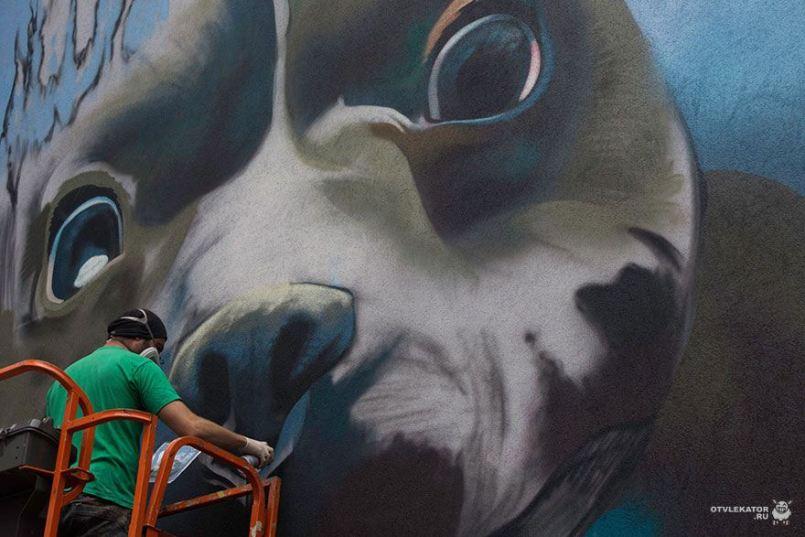 стрит-арт собака ныряет - творческий процесс