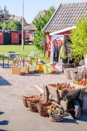 Bornholm rowerem (35)
