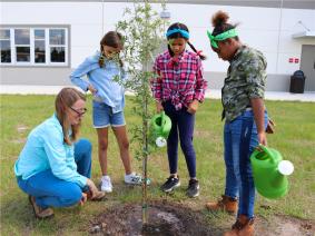OUC Helps Grow a Green Generation with TreeCircus