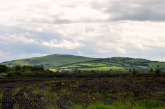 Harvested peat against the backdrop of an Irish rural scene...