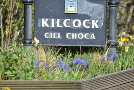 Welcome... to spring in Kilcock!