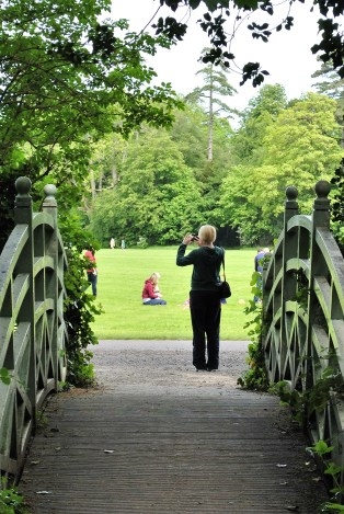 Capturing the Marlay Park moment