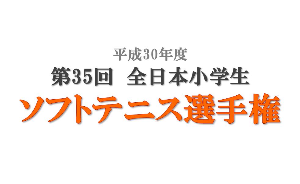 第35回全日本小学生ソフトテニス選手権