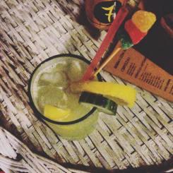 Coktel Vodka Concombre Citro hostel Casa Del Arbol cafayate Nord-Ouest de l'Argentine