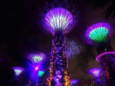 supergrove-trees-spectacle-singapore