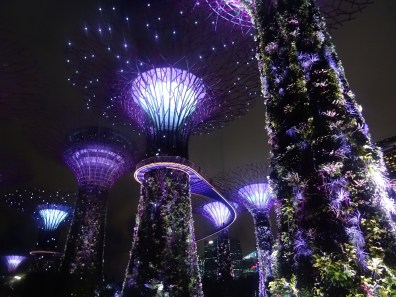 supergrove-trees-spectacle-singapour