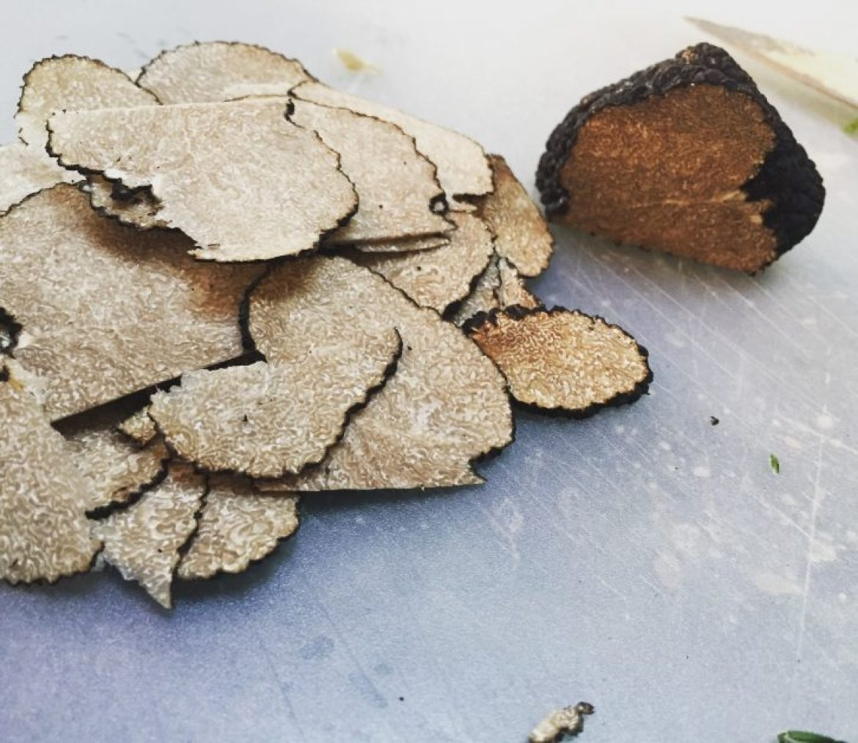 black-truffle-1290719.jpg