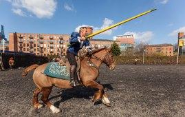 Horse Show image