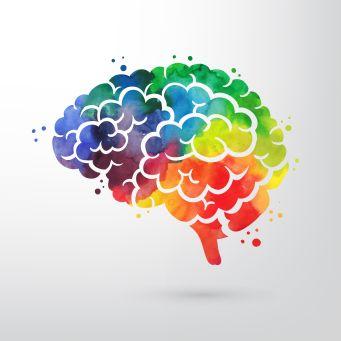 Minds Matter Psychology Of Language Learning Qa Oxford