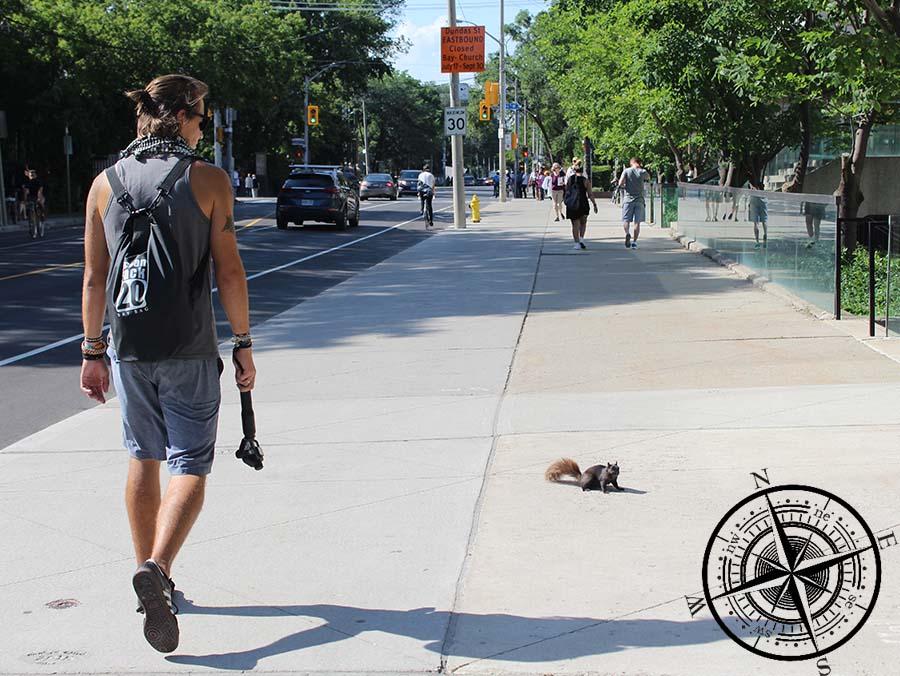 Torben und das schwarze kanadische Eichhörnchen stellen sich vor ;)