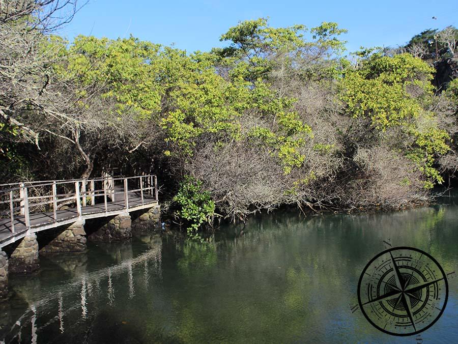 "Die ""Lagune de las Ninfas""..."