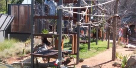 Lemur enclosure