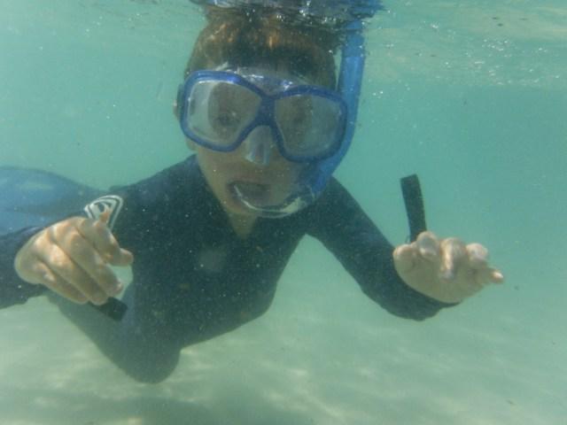 Caelan action shot snorkelling at Whitehaven Beach.