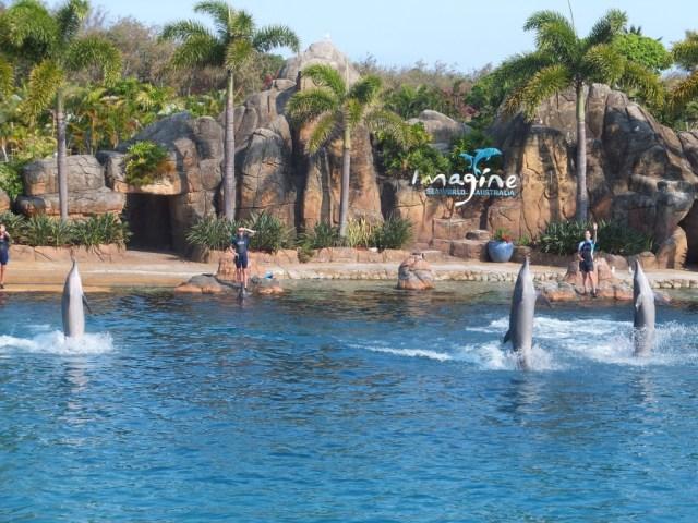 Imagine Dolphin Show