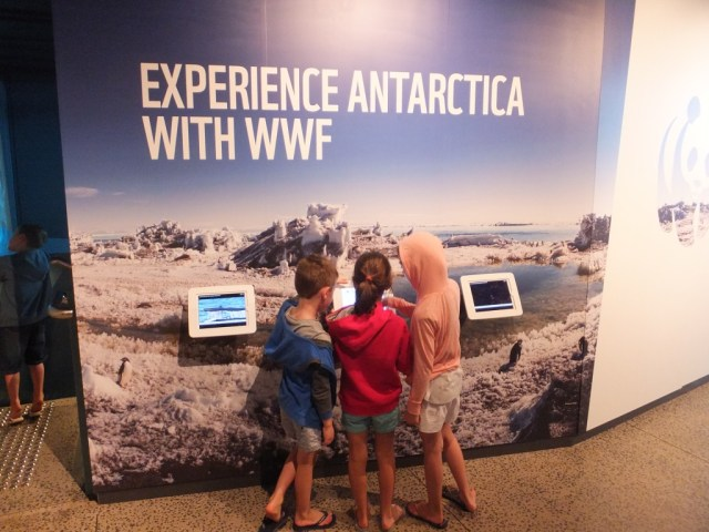Interactive learning experiences